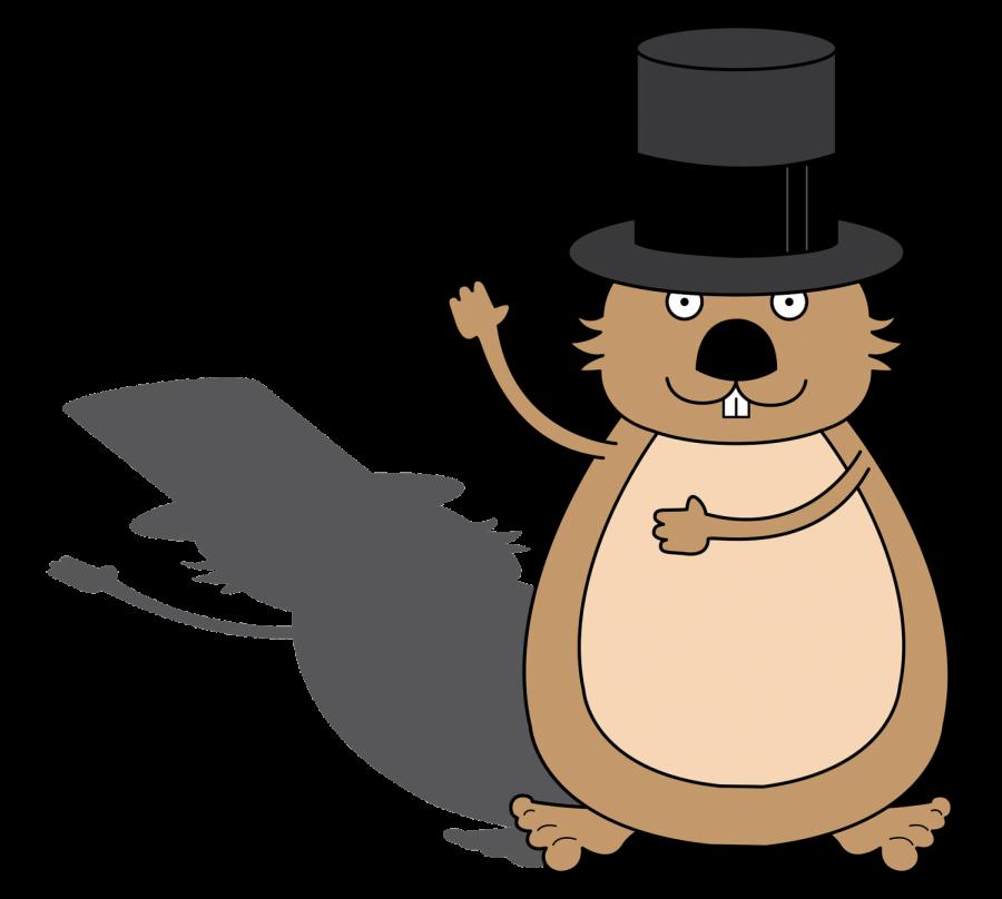 Groundhog prepares to predict weather